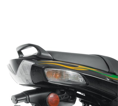 NINJA® ZX™-14R ABS Passenger Grab Handle, Golden Blazed Green/40R