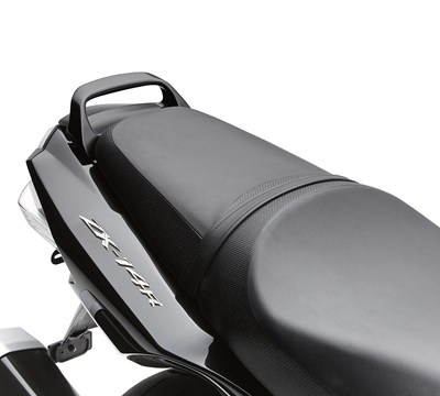 NINJA® ZX™-14R ABS Passenger Grab Handle, Metallic Spark Black/660