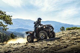 BRUTE FORCE® 750 4x4i EPS