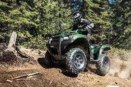 Gallery Photo Image: BRUTE FORCE® 750 4x4i