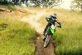 Gallery Photo Image: KLX®230R