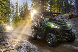 Gallery Photo Image: TERYX® LE