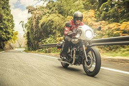 Gallery Photo Image: W800 CAFE
